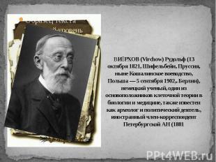 ВИРХОВ (Virchow) Рудольф (13 октября 1821, Шифельбейн, Пруссия, ныне Кошалинское