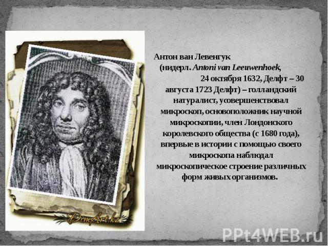 Антон ван Левенгук (нидерл. Antoni van Leeuwenhoek, 24 октября 1632, Делфт – 30 августа 1723 Делфт) – голландский натуралист, усовершенствовал микроскоп, основоположник научной микроскопии, член Лондонского королевского общества (с 1680 года), вперв…