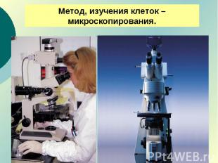 Метод, изучения клеток – микроскопирования.