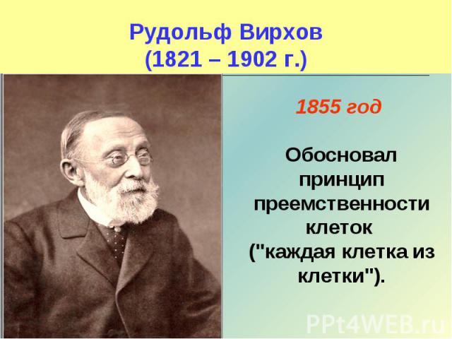 Рудольф Вирхов(1821 – 1902 г.) 1855 год Обосновал принцип преемственности клеток (