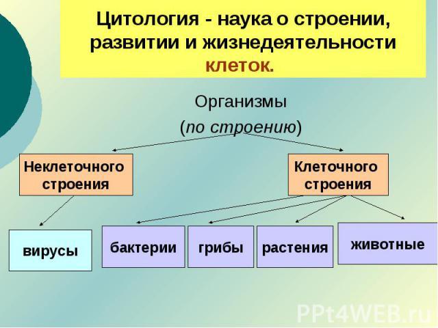 Цитология - наука о строении, развитии и жизнедеятельности клеток. Организмы(по строению)