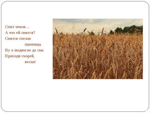 Спит земля…А что ей снится?Снится спелая пшеница.Ну а людям не до сна:Приходи скорей, весна!
