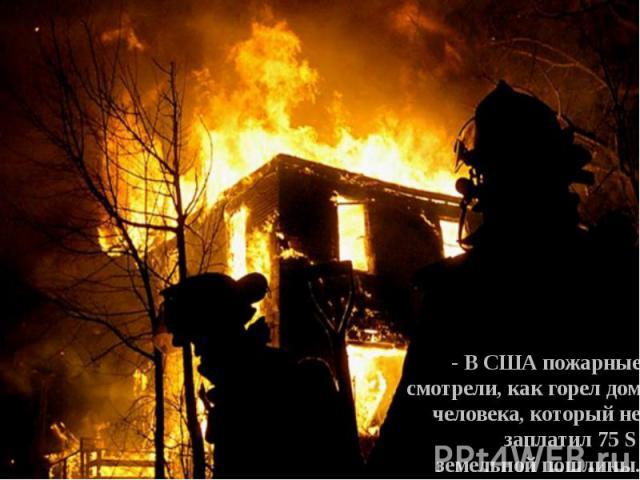 - В США пожарные смотрели, как горел дом человека, который не заплатил 75 S земельной пошлины.