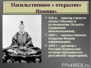 Насильственное « открытие» Японии» XVII в. – приход к власти сёгуна Токугавы и у