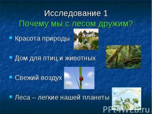Исследование 1Почему мы с лесом дружим? Красота природыДом для птиц и животныхСв