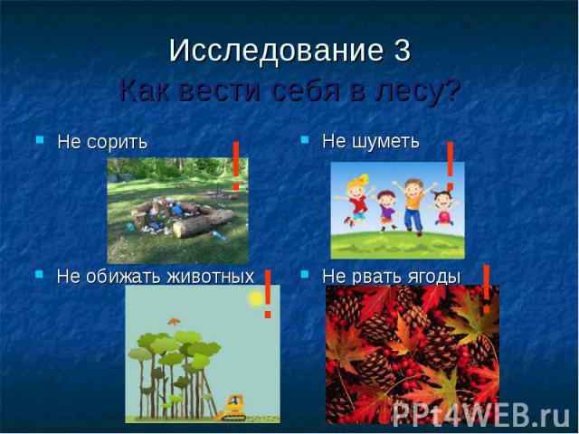 Исследование 3Как вести себя в лесу?Не сорить