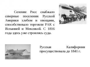 Селение Росс снабжало северные поселения Русской Америки хлебом и овощами, спосо