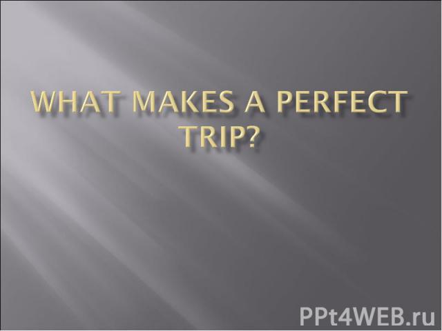 What makes a perfect trip?