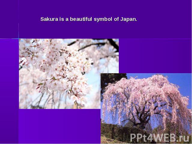 Sakura is a beautiful symbol of Japan.