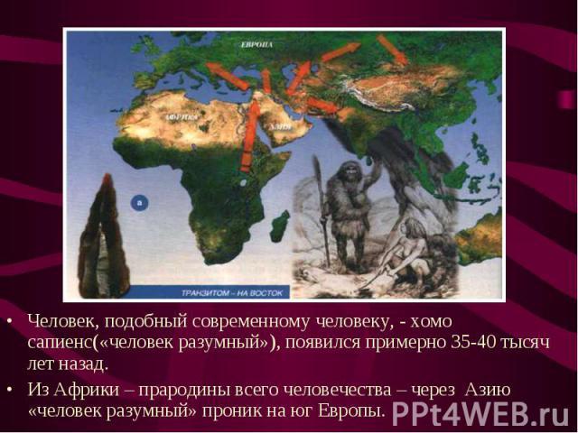 Человек, подобный современному человеку, - хомо сапиенс(«человек разумный»), появился примерно 35-40 тысяч лет назад.Из Африки – прародины всего человечества – через Азию «человек разумный» проник на юг Европы.