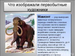 Что изображали первобытные художники Мамонт — род вымерших животных четвертичног