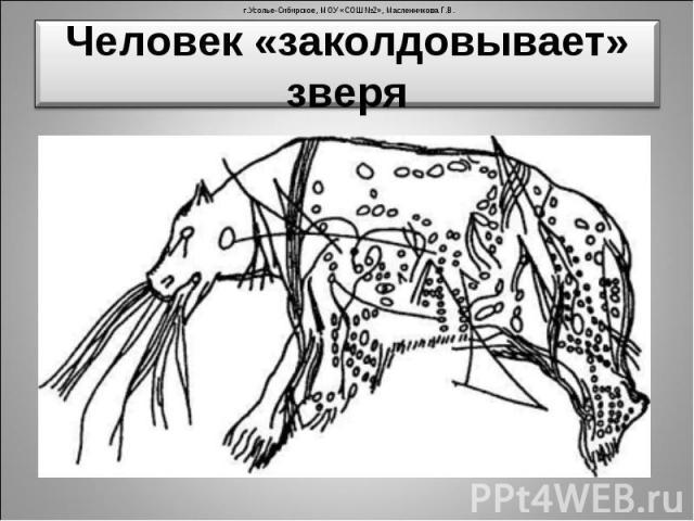 Человек «заколдовывает» зверя