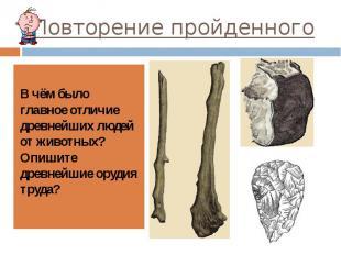 Повторение пройденного В чём было главное отличие древнейших людей от животных?