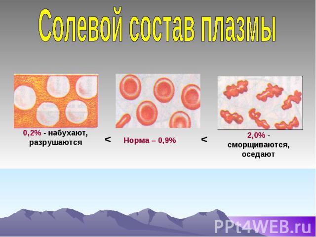 Солевой состав плазмы 0,2% - набухают, разрушаются Норма – 0,9% 2,0% - сморщиваются, оседают