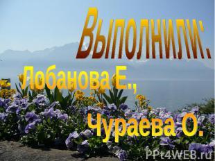 Выполнили: Лобанова Е., Чураева О.
