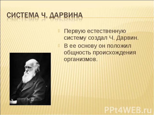 Система Ч. Дарвина Первую естественную систему создал Ч. Дарвин.В ее основу он положил общность происхождения организмов.