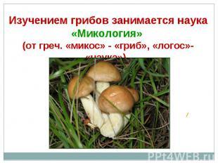 Изучением грибов занимается наука «Микология» (от греч. «микос» - «гриб», «логос
