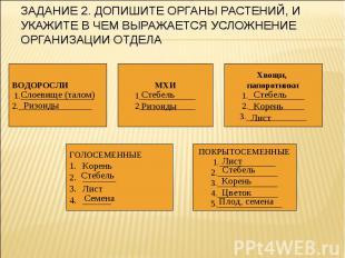 Задание 2. Допишите органы растений, и укажите в чем выражается усложнение орган
