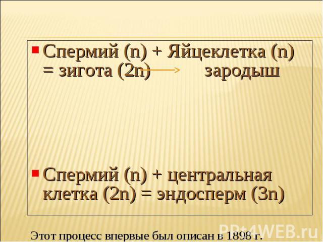 Спермий (n) + Яйцеклетка (n) = зигота (2n) зародыш Спермий (n) + центральная клетка (2n) = эндосперм (3n)Этот процесс впервые был описан в 1898 г.выдающимся русским цитологом и эмбриологом С.Г. Навашиным.
