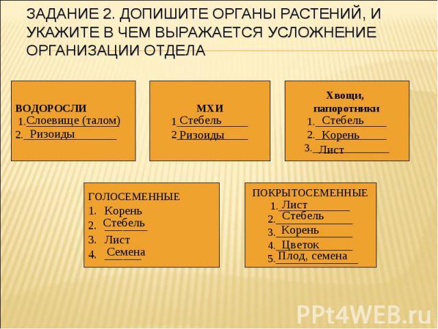 Задание 2. Допишите органы растений, и укажите в чем выражается усложнение организации отдела
