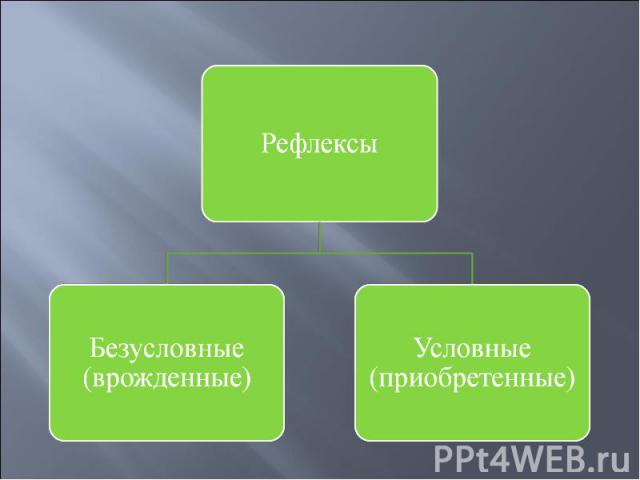 РефлексыБезусловные (врожденные)Условные (приобретенные)