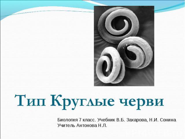 Тип Круглые черви Биология 7 класс. Учебник В.Б. Захарова, Н.И. СонинаУчитель Антонова Н.Л.