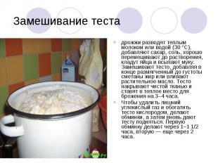 Замешивание теста дрожжи разводят теплым молоком или водой (30 °С), добавляют са