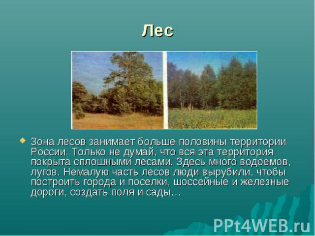 ЛесЗона лесов занимает больше половины территории России. Только не думай, что вся эта территория покрыта сплошными лесами. Здесь много водоемов, лугов. Немалую часть лесов люди вырубили, чтобы построить города и поселки, шоссейные и железные дороги…