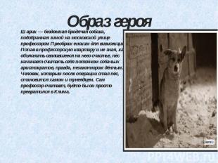 Образ героя Шарик — бездомная бродячая собака, подобранная зимой на московской у