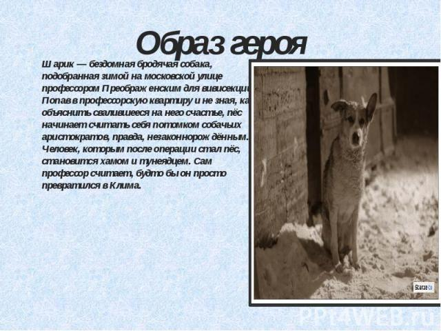 Образ героя Шарик — бездомная бродячая собака, подобранная зимой на московской улице профессором Преображенским для вивисекции. Попав в профессорскую квартиру и не зная, как объяснить свалившееся на него счастье, пёс начинает считать себя потомком с…