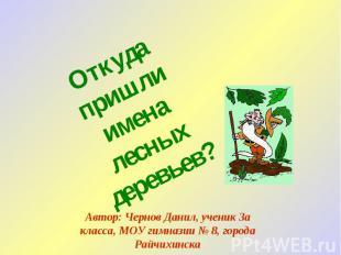 Откуда пришли имена лесных деревьев? Автор: Чернов Данил, ученик 3а класса, МОУ