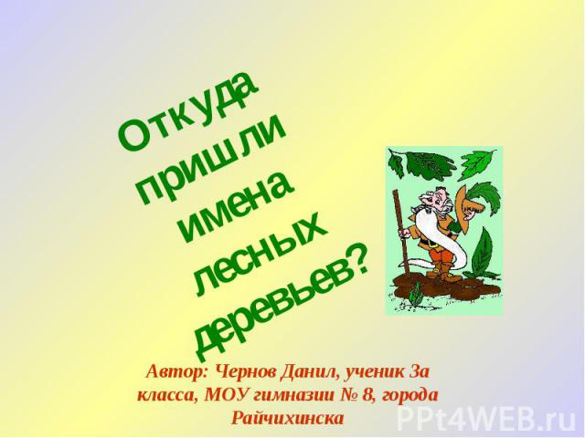 Откуда пришли имена лесных деревьев? Автор: Чернов Данил, ученик 3а класса, МОУ гимназии № 8, города Райчихинска