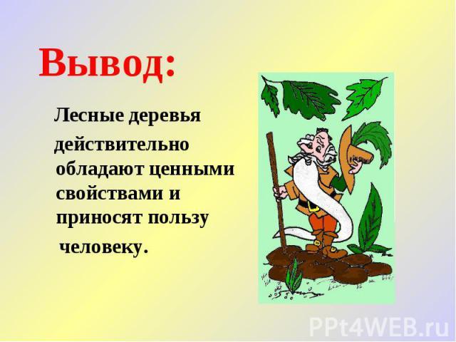 Вывод: Лесные деревья действительно обладают ценными свойствами и приносят пользу человеку.