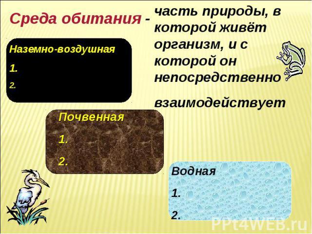 Среда обитания - часть природы, в которой живёт организм, и с которой он непосредственно взаимодействует Наземно-воздушная 1. 2. Почвенная 1. 2. Водная 1. 2.