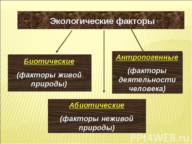 Экологические факторы Биотические (факторы живой природы) Абиотические (факторы неживой природы) Антропогенные (факторы деятельности человека)