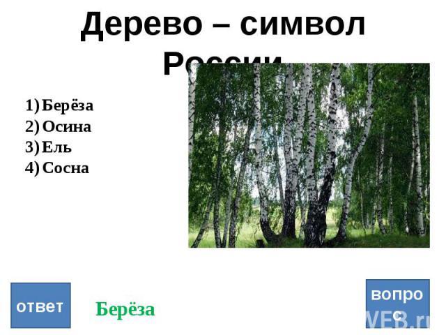 Дерево – символ России вопрос ответ Берёза Осина Ель Сосна Берёза