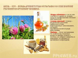 Ягоды облепихи и сок из них считаются одним из лучших средств профилактики лечен