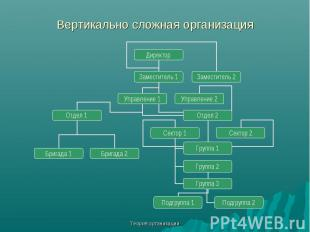 Теория организации Вертикально сложная организация Директор Заместитель 1 Замест