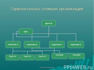 Теория организации Горизонтально сложная организация Директор Управление С Управ
