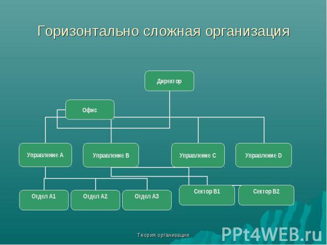 Теория организации Горизонтально сложная организация Директор Управление С Управление А Управление В Управление D Отдел А1 Отдел А2 Отдел А3 Офис Сектор В1 Сектор В2