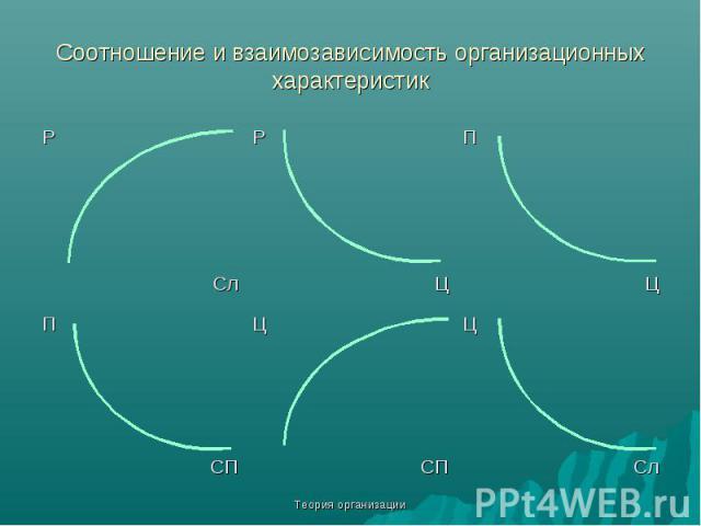 Теория организации Соотношение и взаимозависимость организационных характеристик Р Р П Сл Ц Ц П Ц Ц СП СП Сл