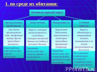 Компьютерный вирус Программные (файловые) Загрузочные Макровирусы Сетевые вирусы