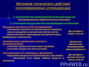 Механизм токсического действия галогенированных углеводородов 1. Целой (неметабо