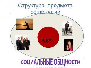 Структура предмета социологии ядро