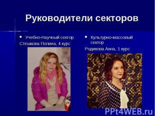 Руководители секторов Учебно-Научный сектор Стешкова Полина, 4 курс Культурно-ма