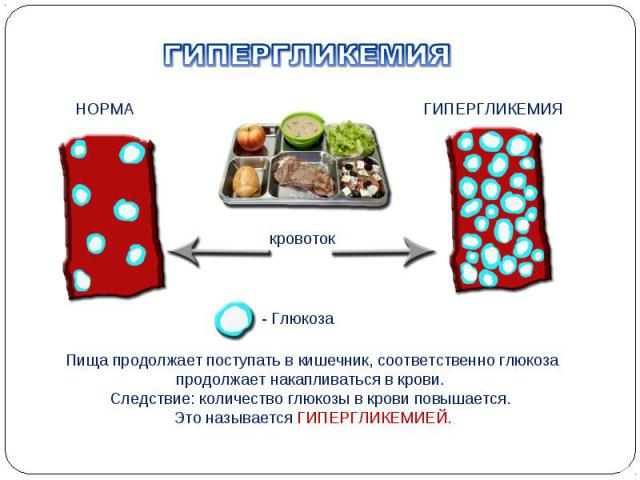 Пища продолжает поступать в кишечник, соответственно глюкоза продолжает накапливаться в крови. Следствие: количество глюкозы в крови повышается. Это называется ГИПЕРГЛИКЕМИЕЙ. кровоток НОРМА ГИПЕРГЛИКЕМИЯ - Глюкоза