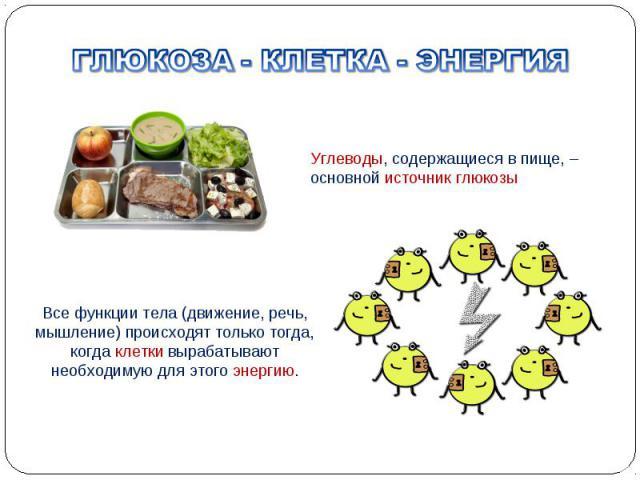 Все функции тела (движение, речь, мышление) происходят только тогда, когда клетки вырабатывают необходимую для этого энергию. Углеводы, содержащиеся в пище, – основной источник глюкозы