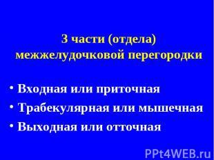 3 части (отдела) межжелудочковой перегородкиВходная или приточнаяТрабекулярная и