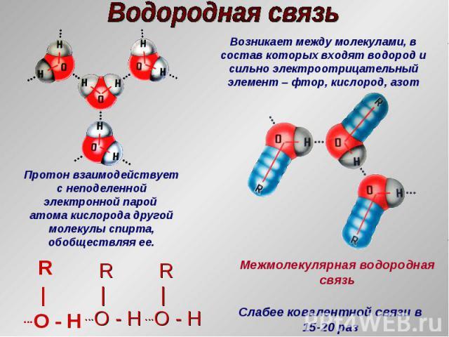 R  ...O - H R  ...O - H R  ...O - H Протон взаимодействует с неподеленной электронной парой атома кислорода другой молекулы спирта, обобществляя ее. Слабее ковалентной связи в 15-20 раз Возникает между молекулами, в состав которых входят водород и с…