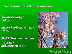 Is a windy today ? What is the weather like? What colour are the trees in spring